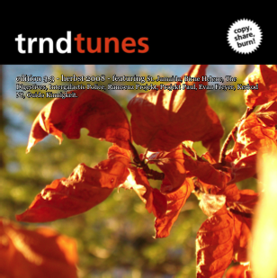 trndtunes 3.3 Albumart