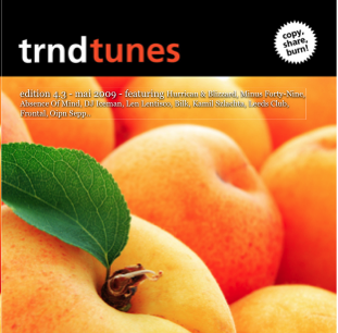 trndtunes 4.3 Albumart